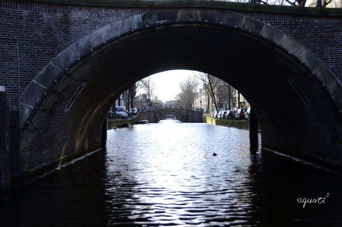 navegan pels canals