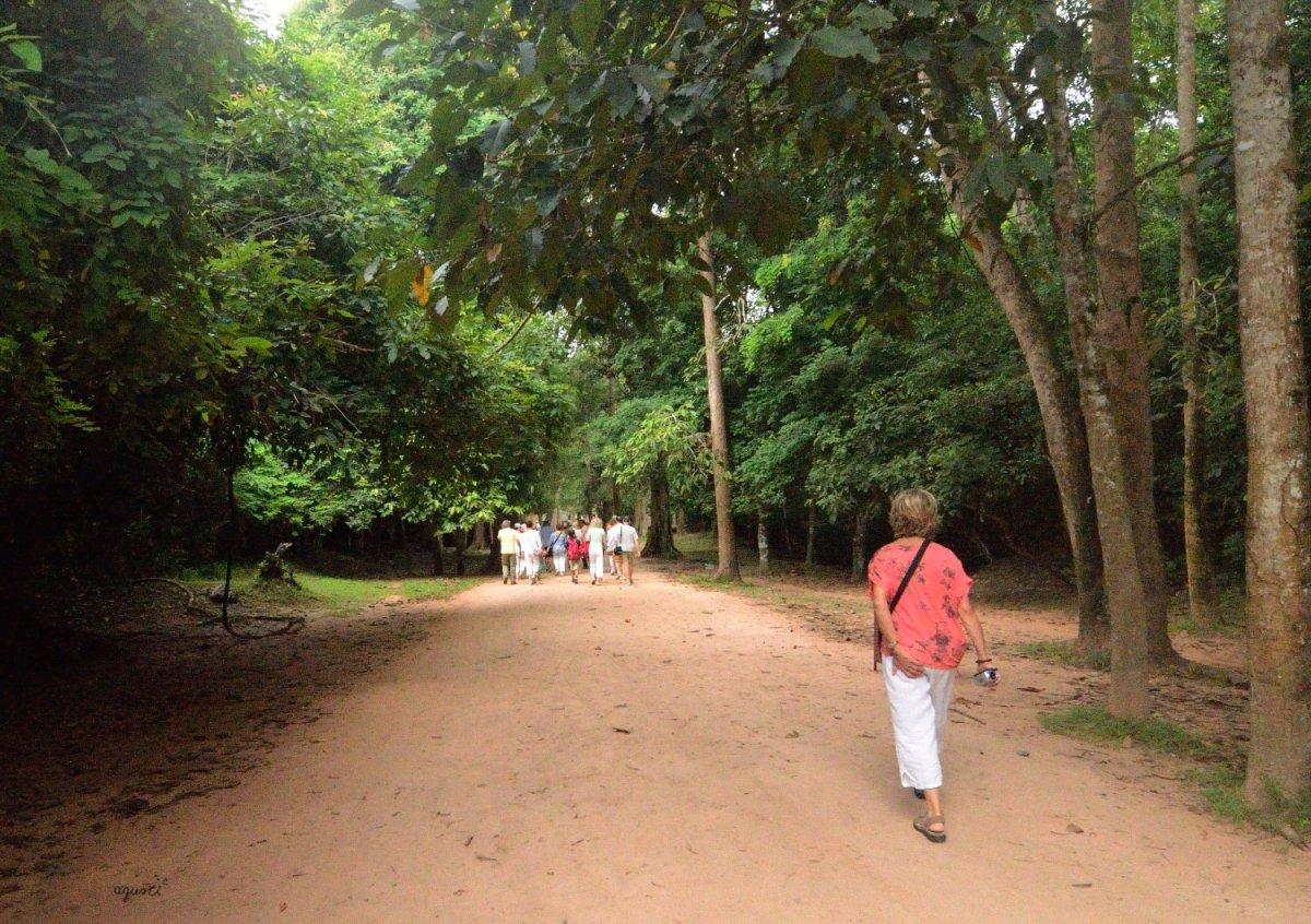 accés al temple de Ta Prohm