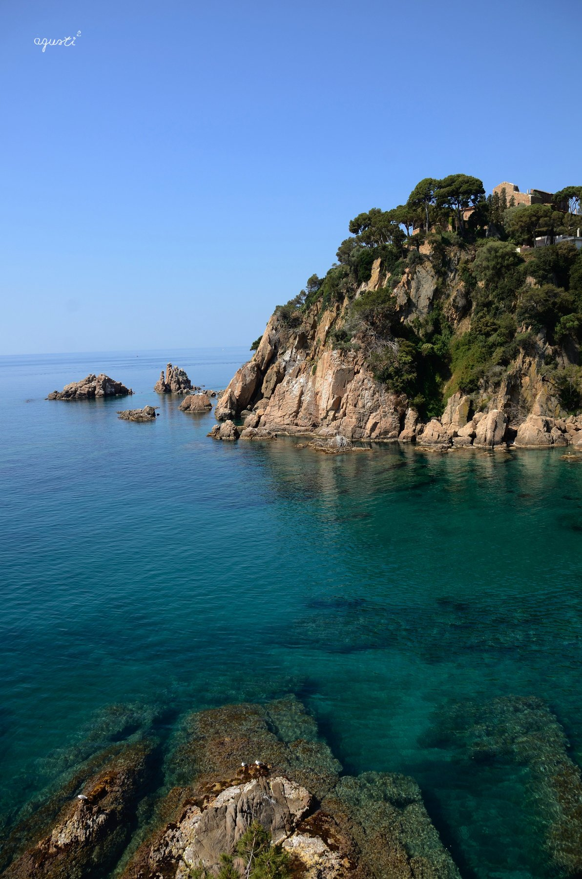 Blanes_04 (06-2015)_01