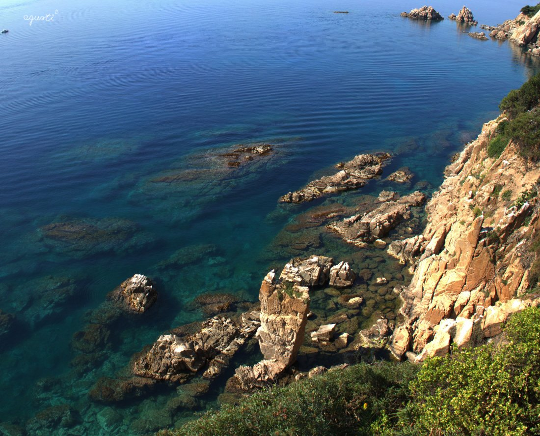 Blanes_06 (06-2015)_01